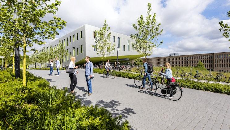 UAS7 - Gebäude, Weg, Bäume